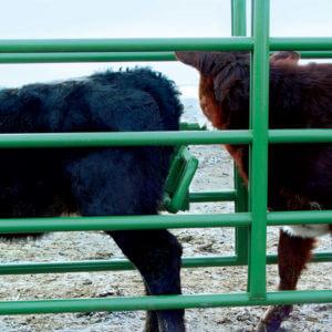 Calf Alley Stop Powder River Handling Equipment