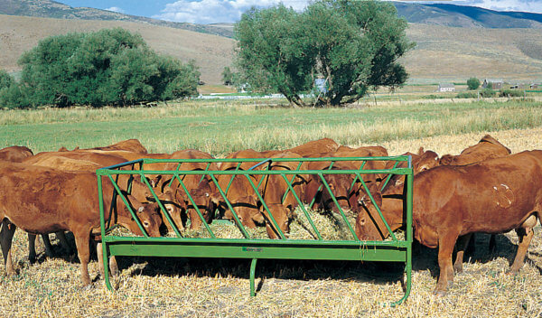 Slant Bar Rack Feeder