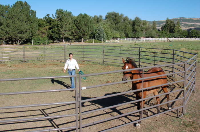 powder mountain round pen for horses
